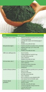 SP Naturals Green Mix - Chlorella Pamplet 3