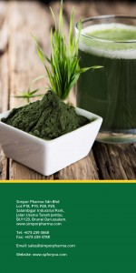 SP Naturals Green Mix - Chlorella Pamplet 4